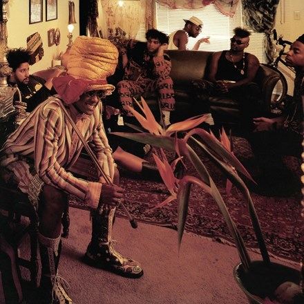 Fishbone - The Reality of My Surroundings (Vinyl LP) LDF25812