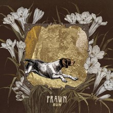 Prawn - Run (Vinyl LP) LDP87612
