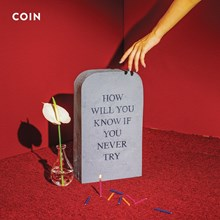 Coin - How Will You Know If You Never Try (Vinyl LP) LDC41612