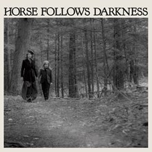 Delia Gonzalez - Horse Follows Darkness (Vinyl LP) LDG52217