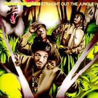 Jungle Brothers - Straight Out The Jungle (Vinyl 2LP) LDJ51016