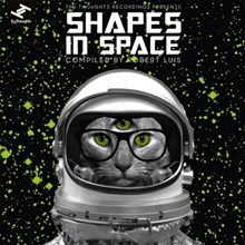 Shapes In Space - Various Artists (Vinyl 2LP) LDS57041