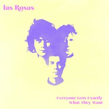 Las Rosas - Everyone Gets Exactly What They Want (Vinyl LP) LDL93513