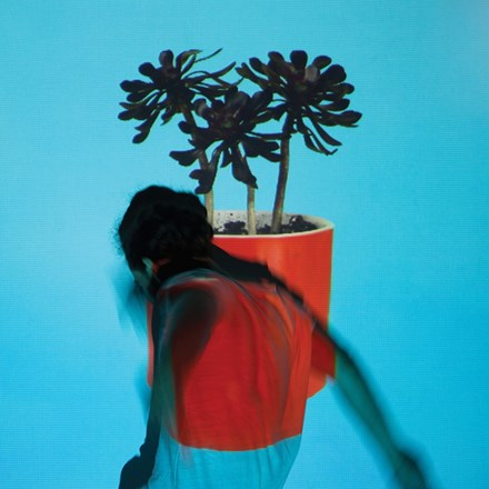 Local Natives - Sunlit Youth (Vinyl LP) LDL03873
